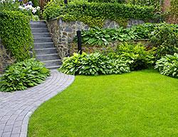 Landscape Design Landscape Designer Los Angeles Sylmar Burbank Ca