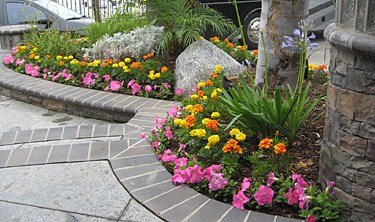 Landscaping Photos Construction Photos Los Angeles